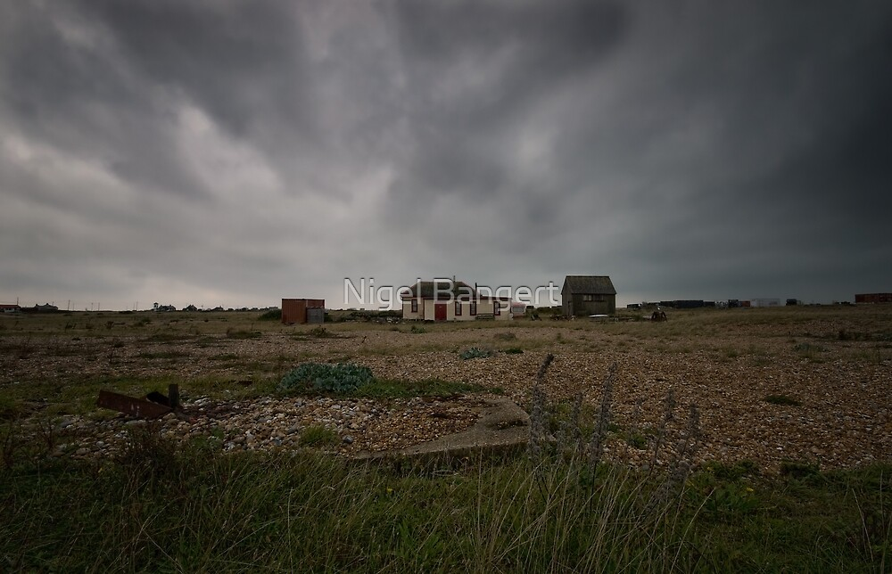 Home by the Sea by Nigel Bangert