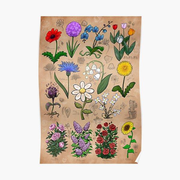 Flowers of Minecraft Botanical Illustrations Poster