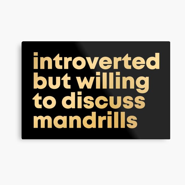 Introverted but willing to discuss Mandrills in Gold Metal Print