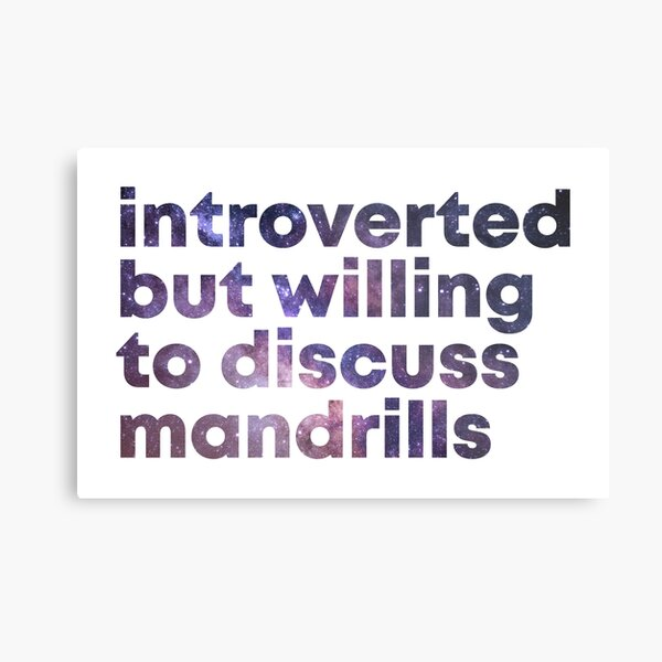 Introverted but willing to discuss Mandrills Metal Print