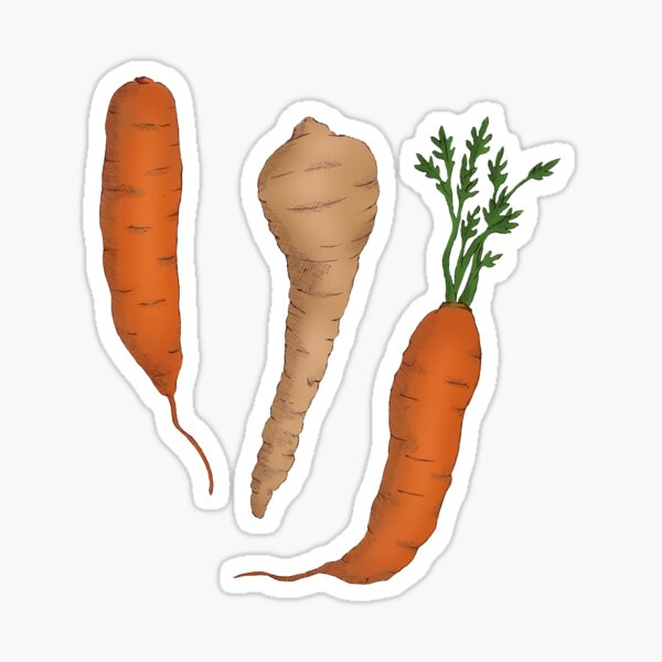 Carrots and Parsnip Sticker