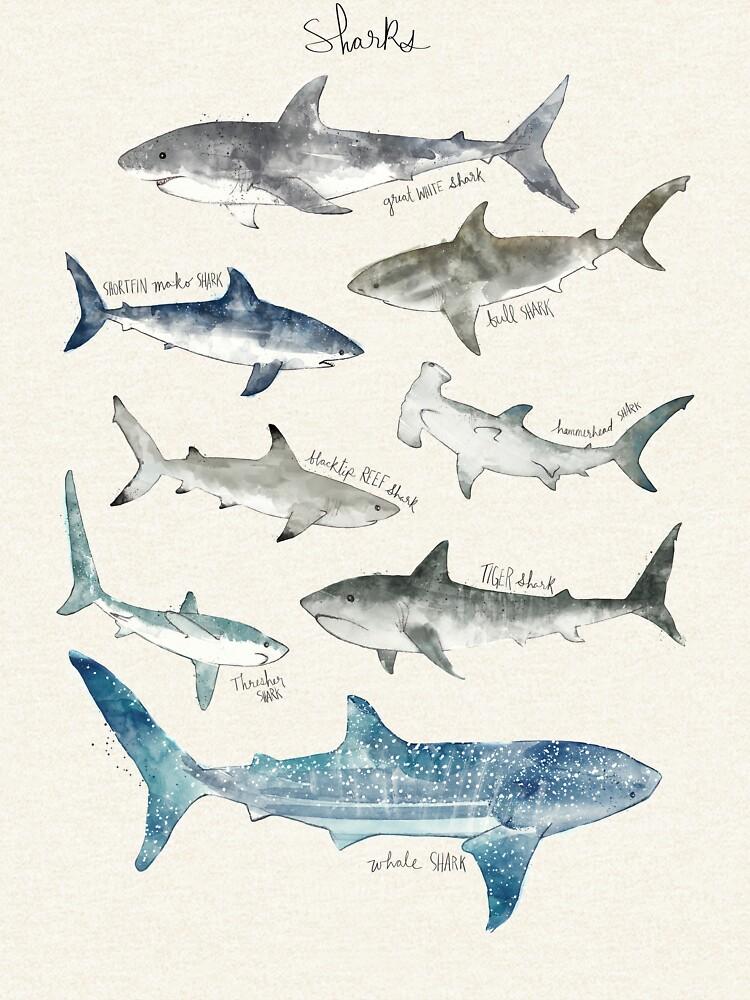 Tiburones de AmyHamilton