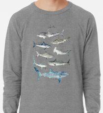 Sharks Lightweight Sweatshirt