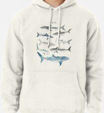 Sudadera con capucha Tiburones