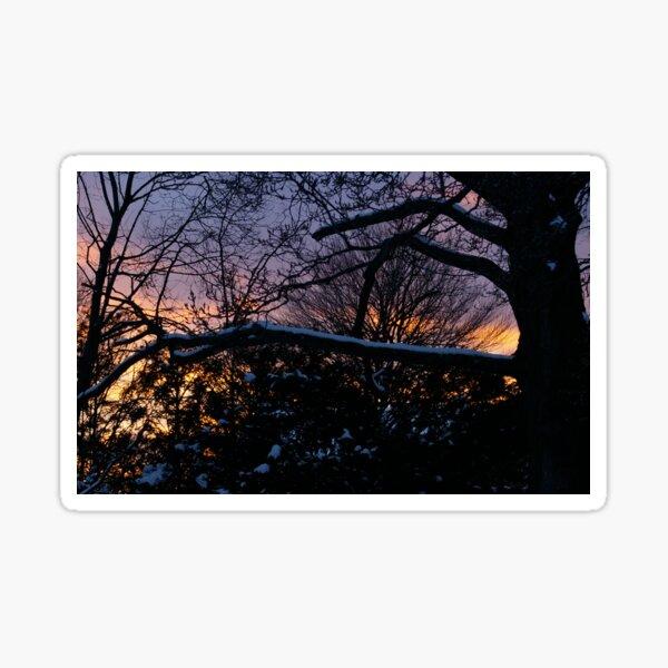 Beauty of Winter, II Sticker