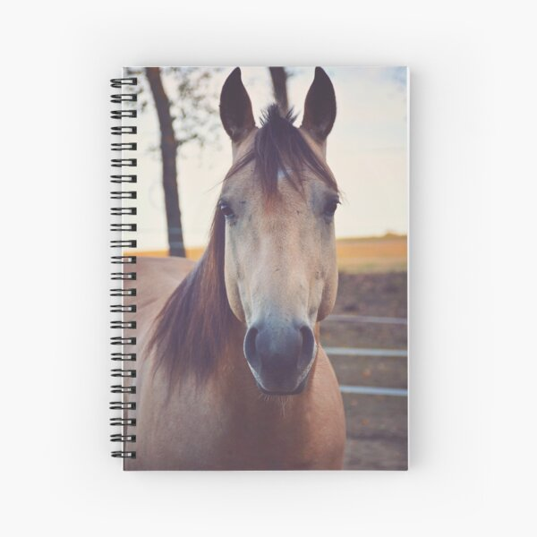 Rocky - quarter horse Spiral Notebook