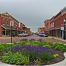Main Street, Fort Scott, Kansas, USA by Margaret  Hyde
