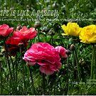 Ein Leben ist wie ein Garten ... von Celeste Mookherjee
