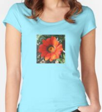 Close Up of a Beautiful Gazania Flower Women's Fitted Scoop T-Shirt