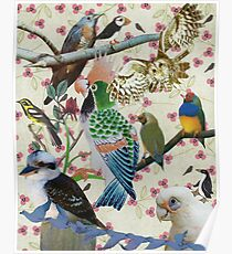 Pretty Birdies Poster