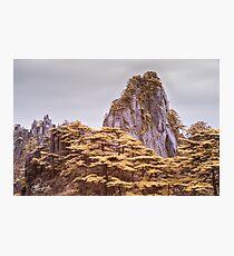 Einzelspitze Fotodruck