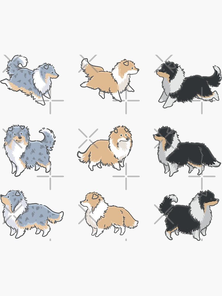 The Rough Collie Pack by elspethrose