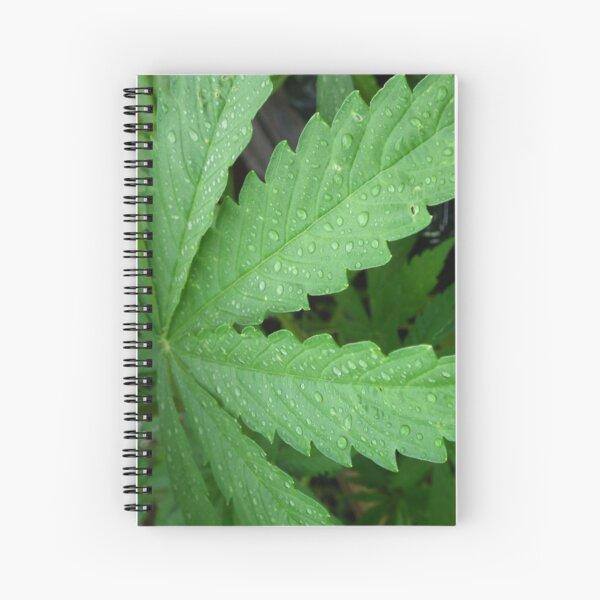 MaryJane Spiral Notebook