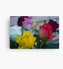 Coloured Roses  Canvas Print