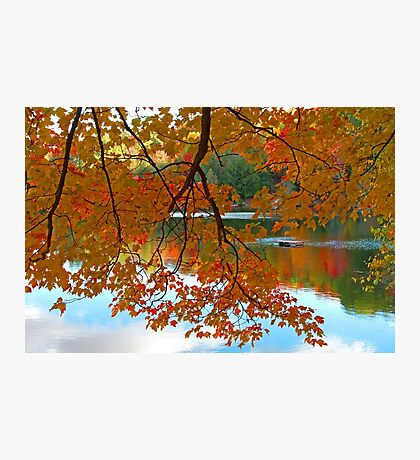Fall in Quebec Photographic Print