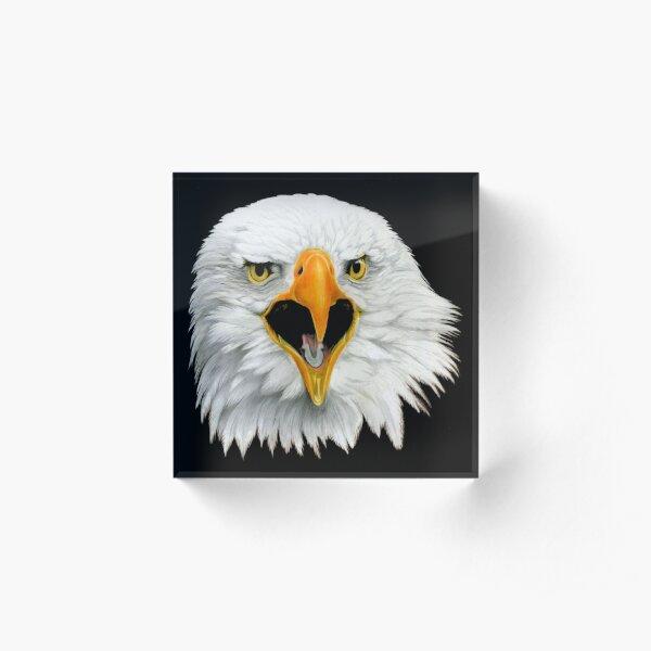 Bald Eagle Acrylic Block