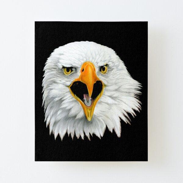 Bald Eagle Canvas Mounted Print