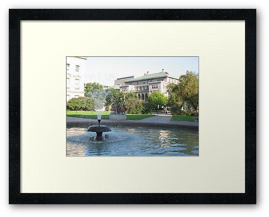 Library Mall Fountain by Tony Herman