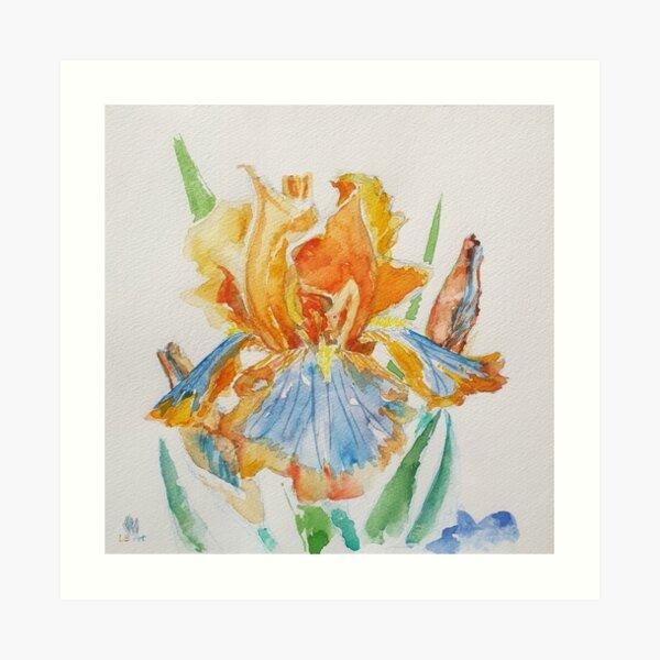 Iris Impression artistique