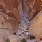 Valley of Fire #3 by Ken McElroy