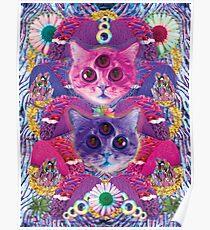 3rd eye tacocat Poster