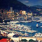 Monaco von ashleygaffney