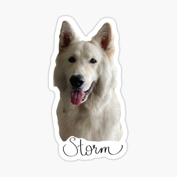 Storm Sticker