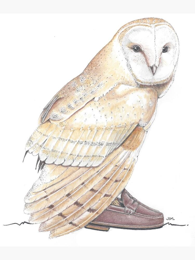 Barn owl in penny loafers by JimsBirds