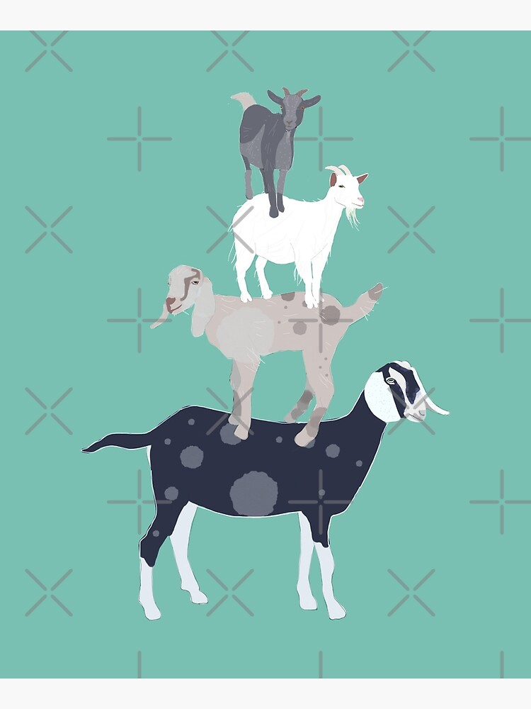 Goat Stack by amymh