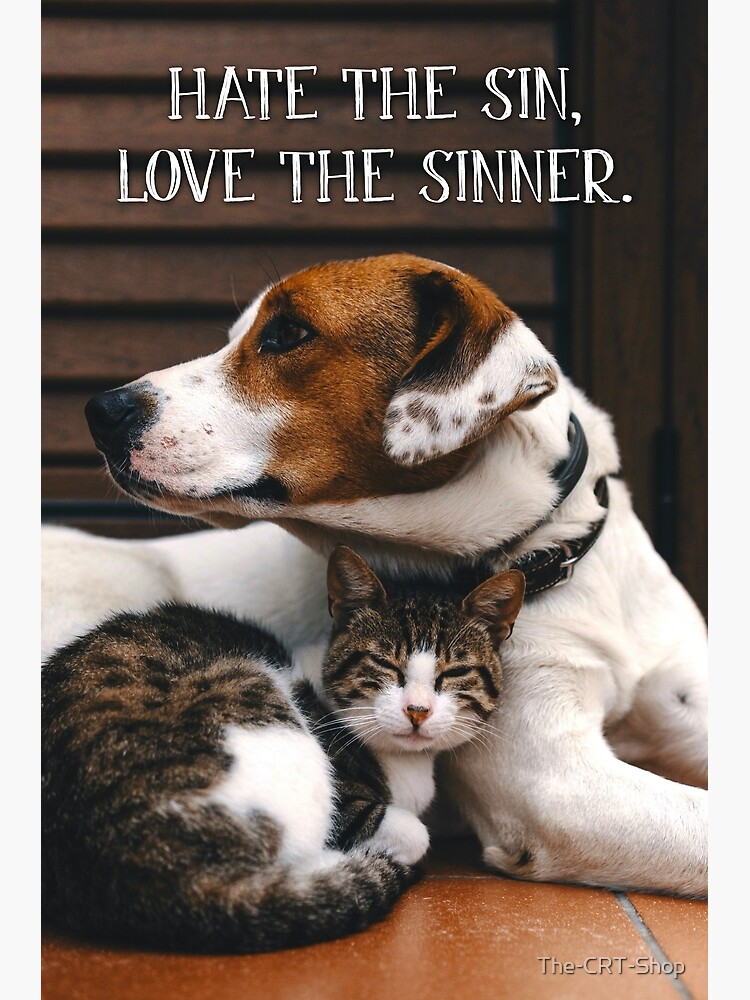 Hate the Sin, Love the Sinner - 1 by The-CRT-Shop