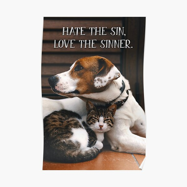 Hate the Sin, Love the Sinner - 1 Poster