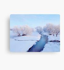 Pretty Winter Stream Canvas Print