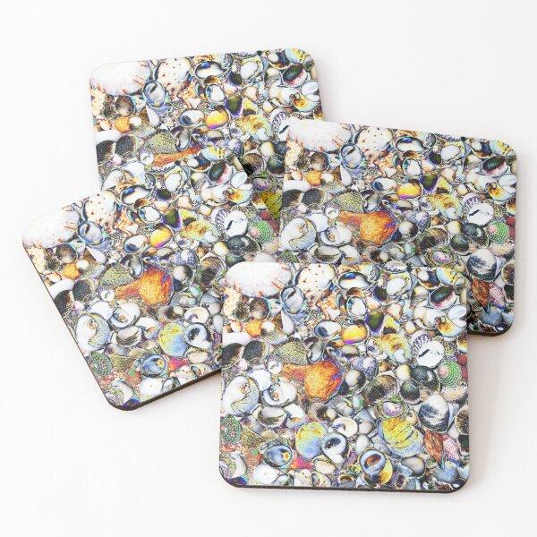 Shells Photography  Coasters (Set of 4)