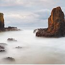 Cathedral Rocks, Kiama, New South Wales, Australia by Michael Boniwell