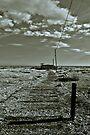 Dungeness 'Sheds' by Nigel Bangert