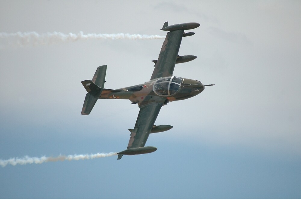 Cessna Dragonfly @ Temora Airshow 2010 by muz2142