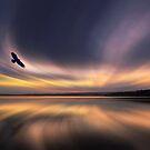 Where Eagles Dawn by David Alexander Elder