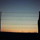 Fence Silhouette by AbigailJoy