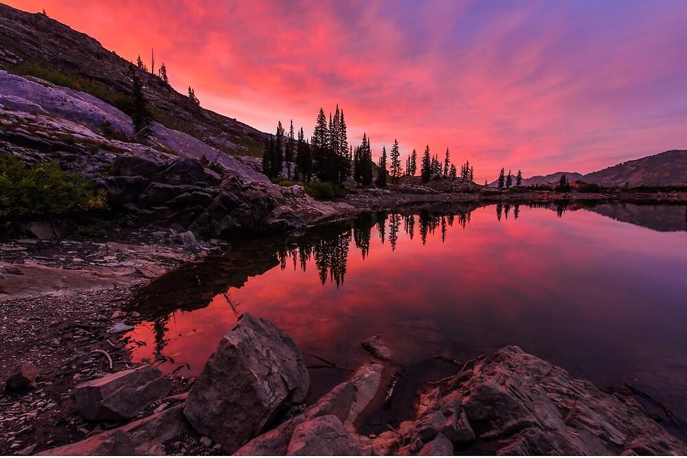 Utah's Cecret by Chad Dutson