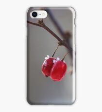 A twig with Berries iPhone Case/Skin