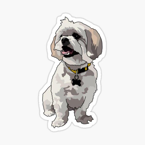 Adorable Malshi Sticker