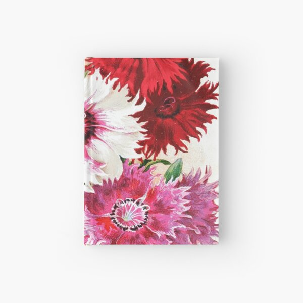 Vintage L'Œillet de Chine Royal Dahlia Botanical Print from the Biodiversity Heritage Library Hardcover Journal
