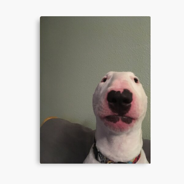 "@PupperNelson: ""Walter"" Original Canvas Print"