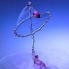 Magic Mushroom by Henry Jager