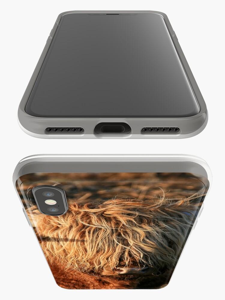 Alternative Ansicht von Highland Cattle - Hochlandkuh - Hochländer iPhone-Hülle & Cover
