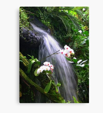 Orchids Waterfall Paradise Canvas Print