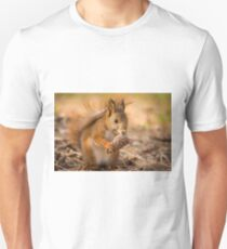 Spanish Red Squirrel in winter T-Shirt