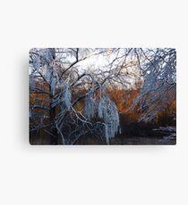 January riverside Canvas Print