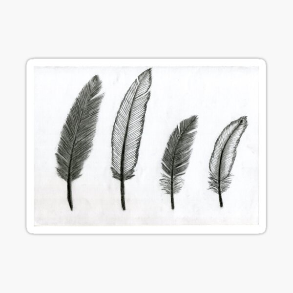 Realistic Bird Feathers Drawing Art - Black and White Sticker