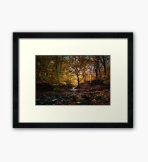 Autumn comes to Tockholes Framed Print